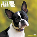 Just Boston Terriers 2016 Calendar