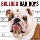 Bulldog Bad Boys 2016 Calendar