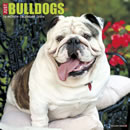 Just Bulldogs 2016 Calendar