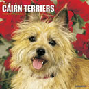 Just Cairn Terriers 2016 Calendar