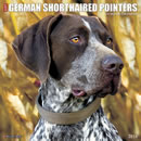 Just German Shorthaired Pointers 2016 Calendar
